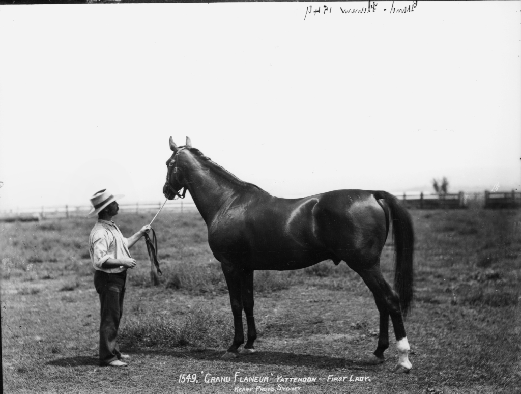 Grand Flaneur, one of the greatest Australian racing stallions.