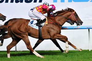 Whitefriars wins the 2011 Australia Stakes