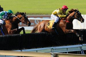 Jumps Racing