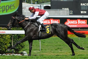 Yulalona is one of three horses sitting at the top of the Frank Underwood Cup odds for Saturday