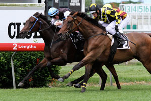 Racing Heart (inside) has earned a 2012 Magic Millions Race Day assignment