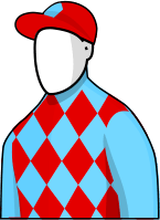 Red Cadueax 2014 Melbourne Cup Jockey Silks