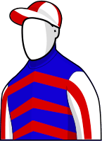 Mutual Regard 2014 Melbourne Cup Jockey Silks