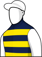Gatewood 2014 Melbourne Cup Jockey Silks
