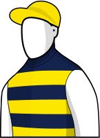 Brambles 2014 Melbourne Cup Jockey Silks