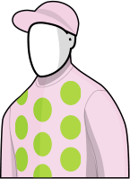 Gallante 2016 Melbourne Cup Silks