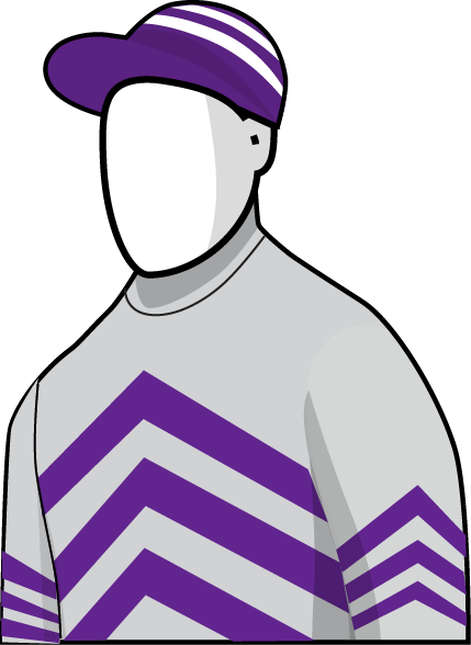 Grey Lion 2016 Melbourne Cup Silks