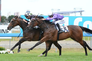 No Looking Back and Driefontein