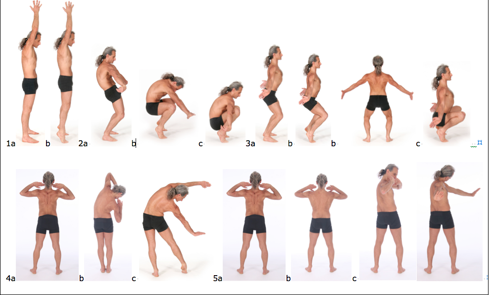 Figure 1: The list of main postures in the spinal movements sequence is as follows: 1. 'Complete spinal lengthening posture' (Urdhva hasta merudanda 
