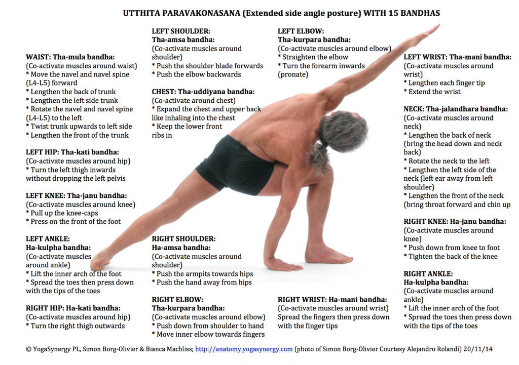 Detailed instructions for Parsvakonasana (Lateral angle posture) by Simon Borg-Olivier (Please click on photo to enlarge)