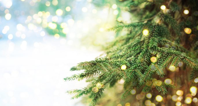 christmas has come early or at least just around the corner as the expressionists share some of their favourite christmas related idioms - Christmas Idioms