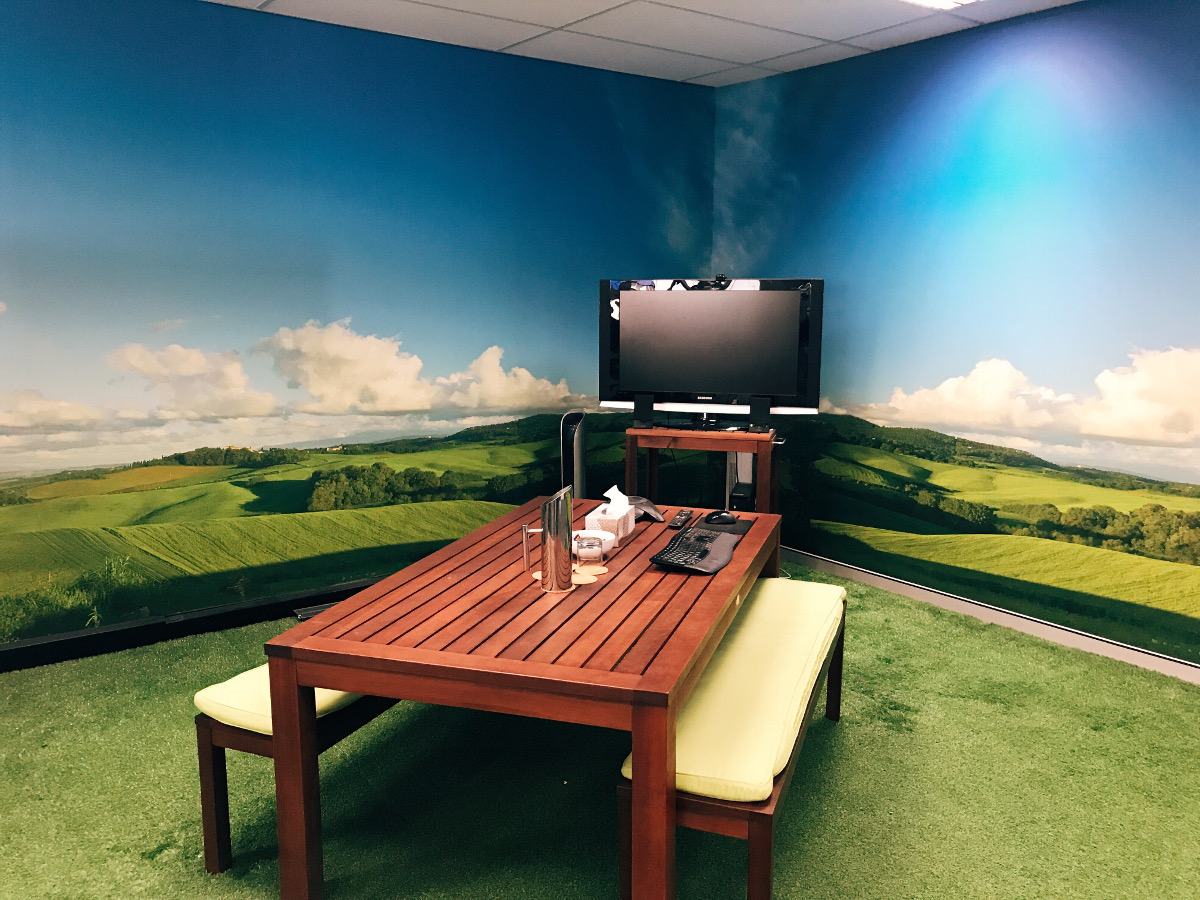 Meeting room with fake grass and countryside background wall photo