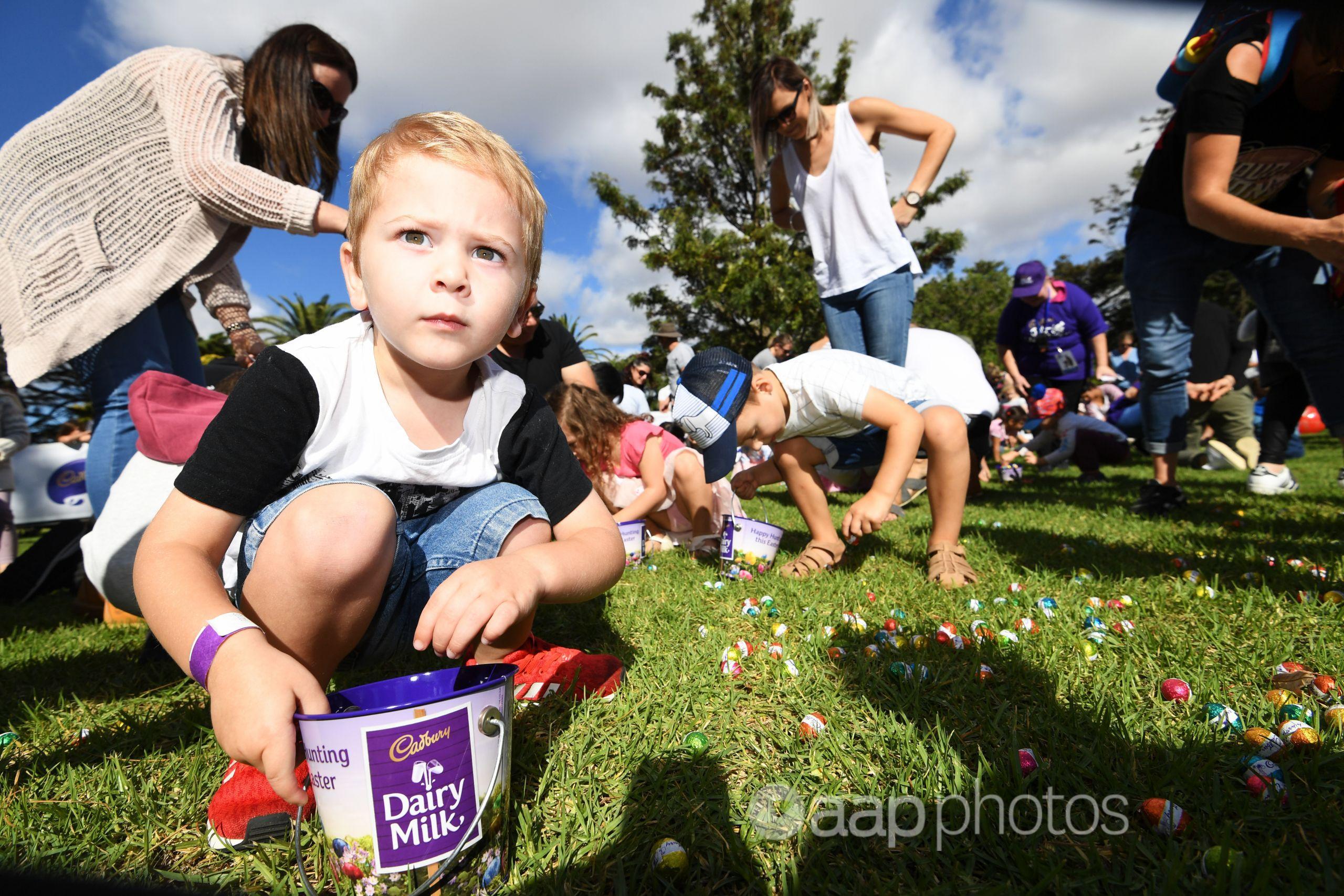Children collect chocolate eggs