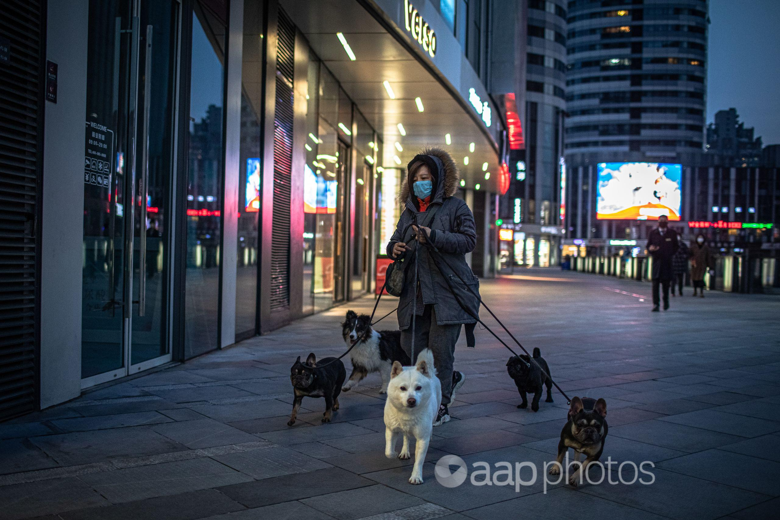A woman wearing a protective face mask walks dogs in Beijing, China