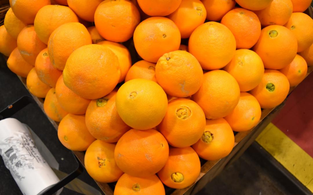 Celebrating Citrus!