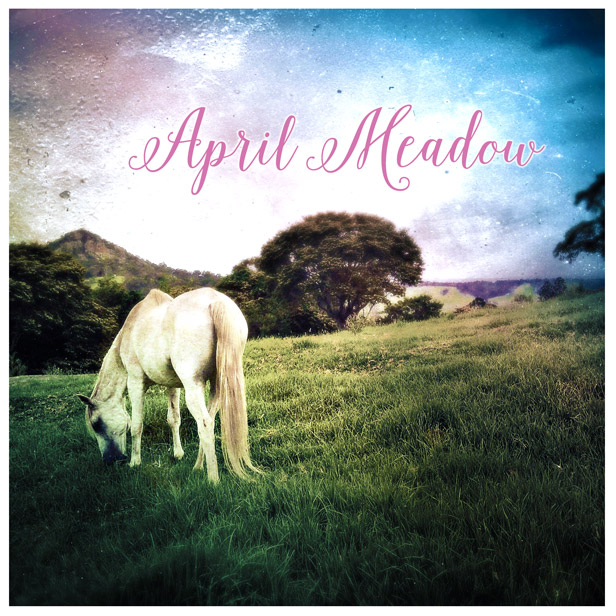 April Meadow Acoustic