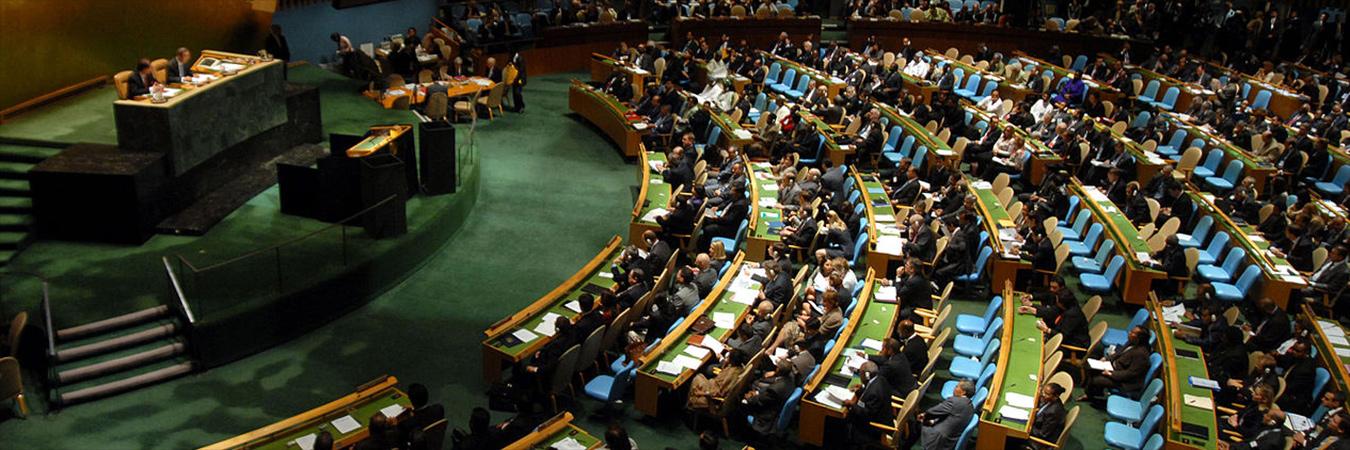 SR110_Elections-at-UN_Banner