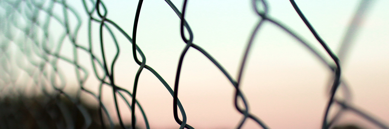 Fence - chain link