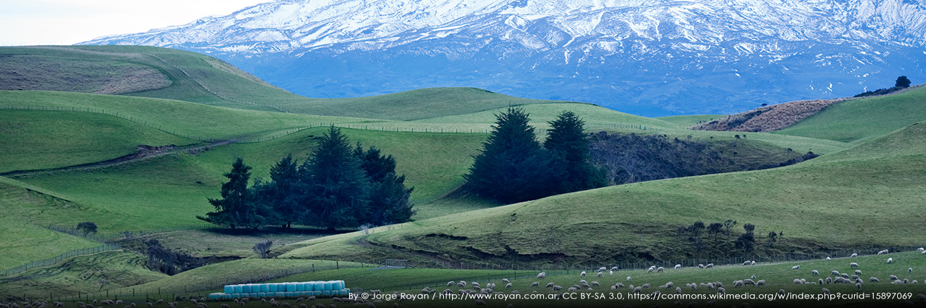 NZ Landscape. By © Jorge Royan/http://www.royan.com.ar, CC BY-SA 3.0, https://commons.wikimedia.org/w/index.php?curid=15897069