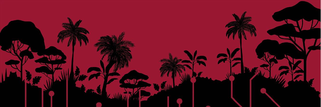 ICT development Pacific Islands - banner