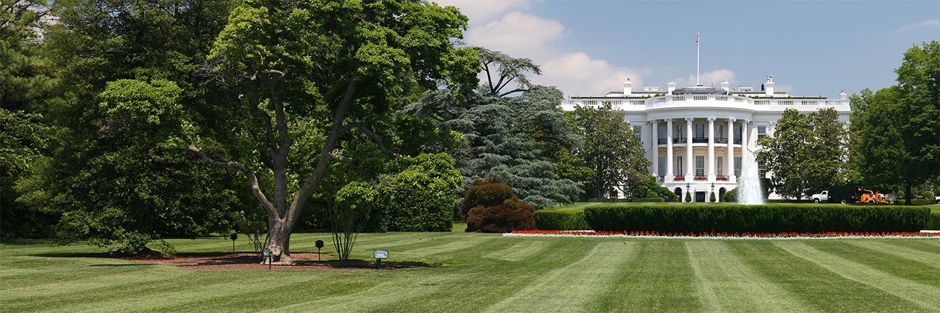 Whitehouse lawn. via https://upload.wikimedia.org/wikipedia/commons/2/2e/White_House_lawn.jpg