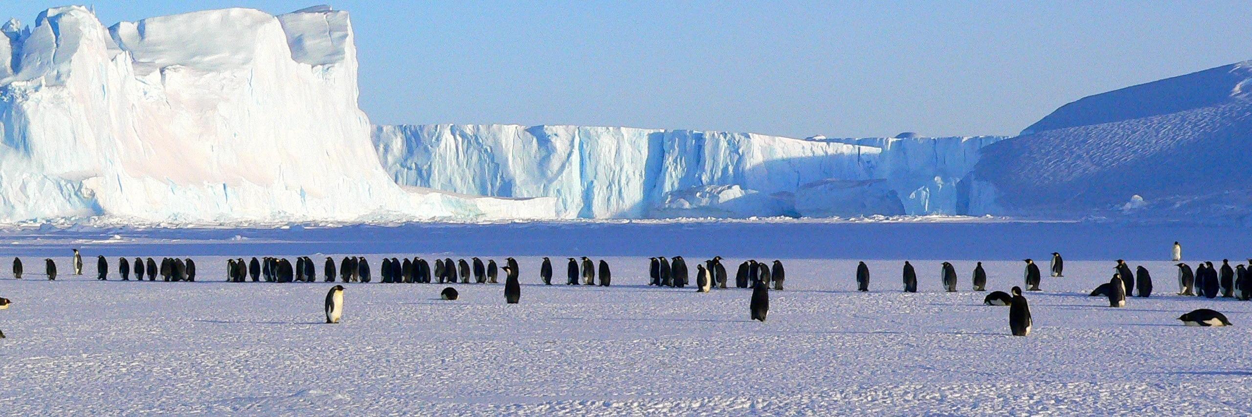 Antartica_20210513