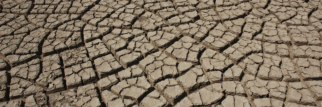 Cracked Earth - drought - banner