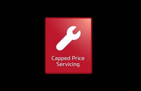 capped-price-servicing.jpg