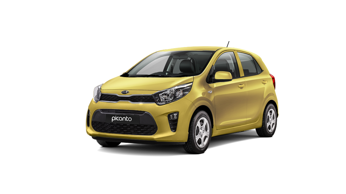 Kia-Picanto-honey-bee.png