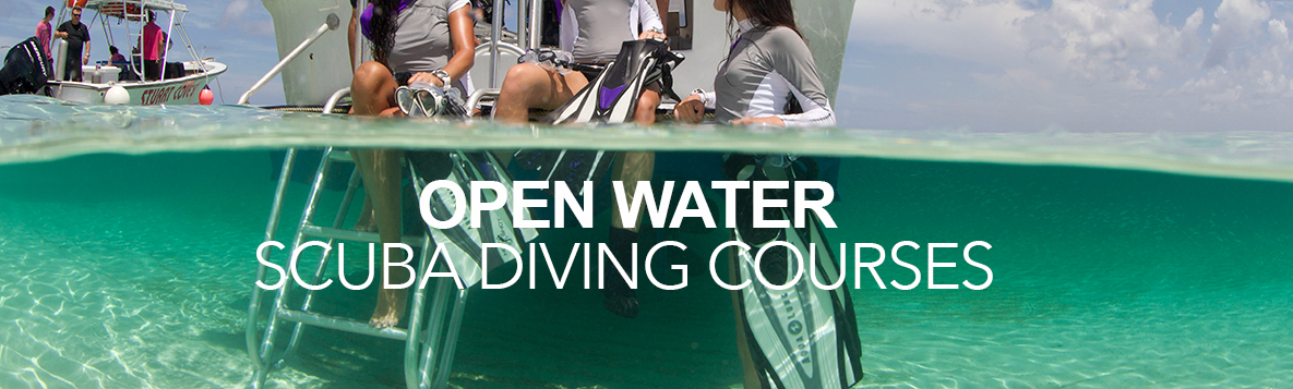 Open Water Scuba Courses