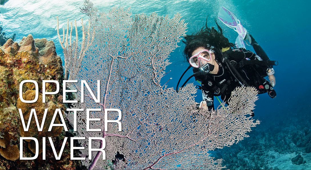 SSI Open Water Diver Course