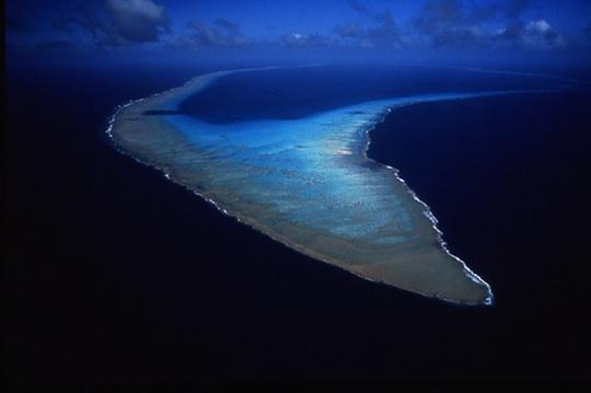 The stunning Osprey Reef