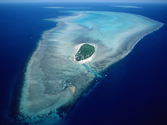 Heron Island's outer reefs are frequented by Mantas