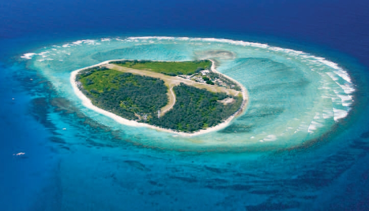 Lady Elliot Island Eco Resort is a popular tourist destination, freuqented by Scuba Divers looking for a Manta or Turtle encounter