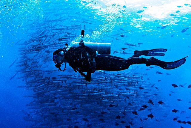 Scuba Divers Paradise - Spiadan!