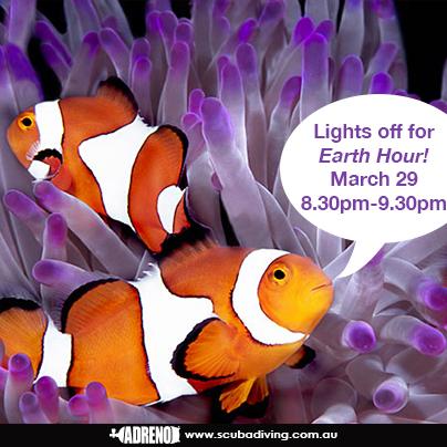 earth-hour-scuba