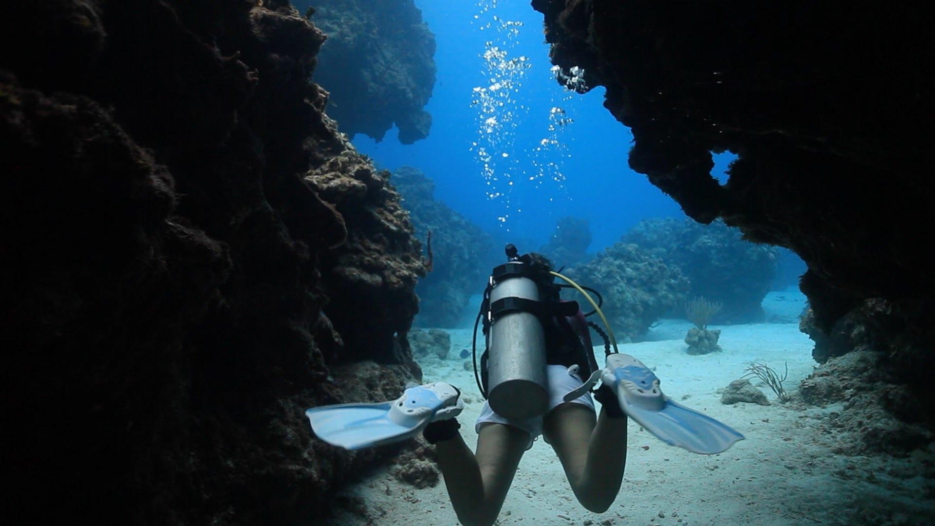 Melbourne Top 5 Scuba Dive Sites