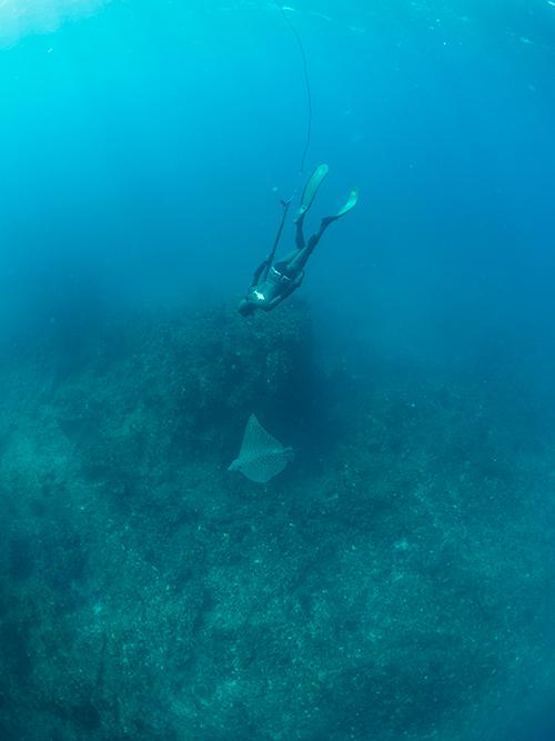 _3_Australia_Huchison-Reef_Robbie_2015-(26-of-43)