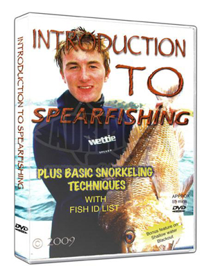 Introduction to Spearfishing