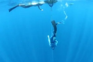 Travis Freediving