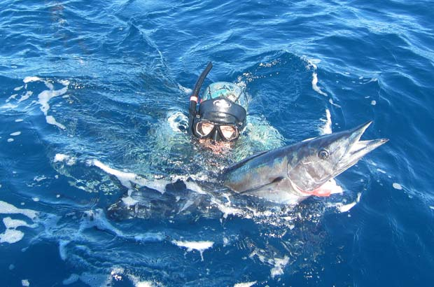 Dr Whoo With His 15kg Wahoo On The Surface