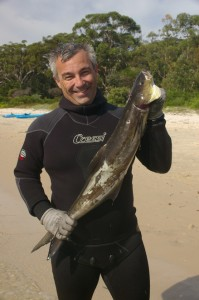 Not a common catch in the area! A great tasting Cobia.