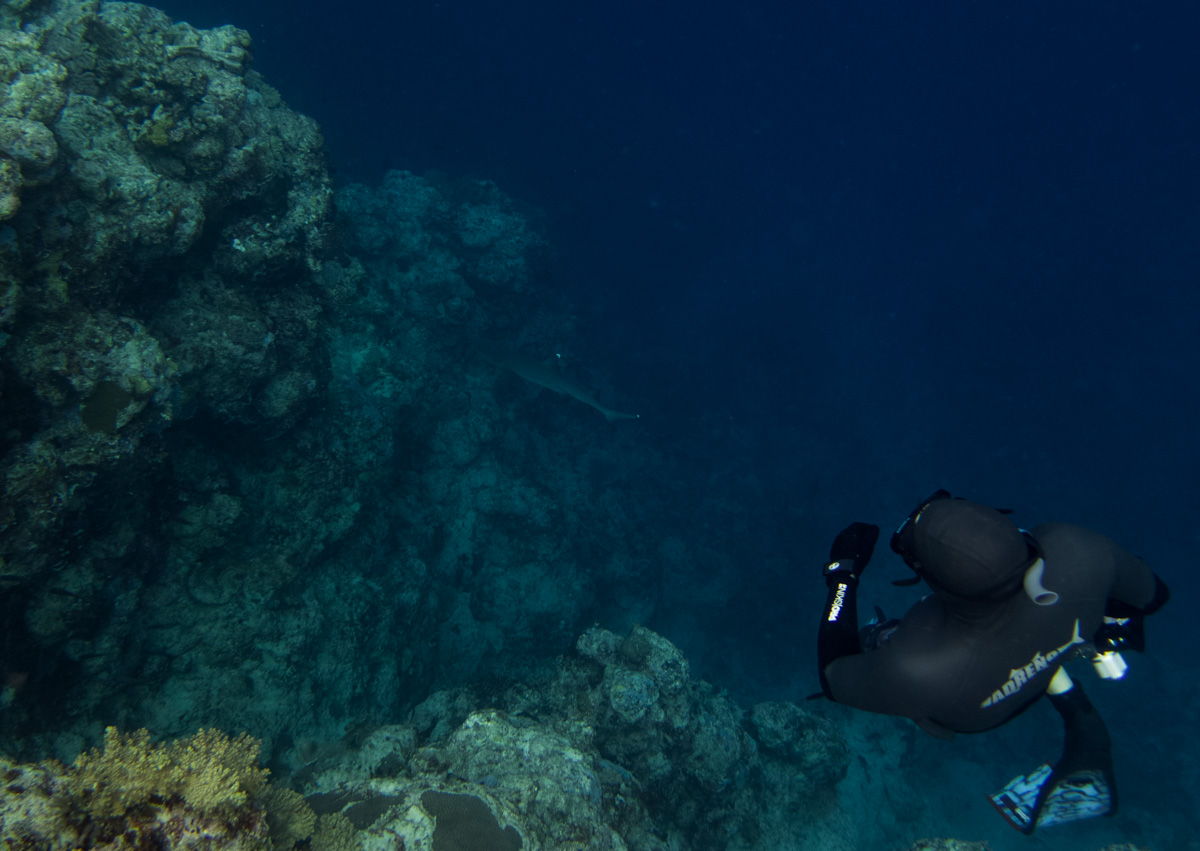 solomon-islands-freediving-1