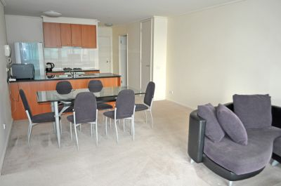 The Summit 23rd floor FULLY FURNISHED, 163 City Rd: Contemporary Style! L/B