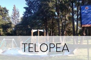 Telopea