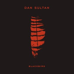 Dan Sultan - The Same Man
