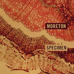 Moreton - Specimen - Internet Download
