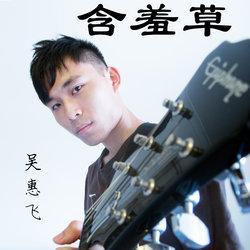 Hui Fei Ngoo - Mimosa Pudica - Internet Download