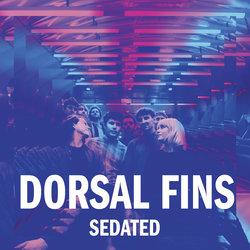 Dorsal Fins - Sedated