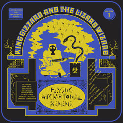 King Gizzard & The Lizard Wizard - Rattlesnake